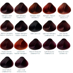 Mahogany, Violet & Burgundy Professional Hair Colour Cream ...