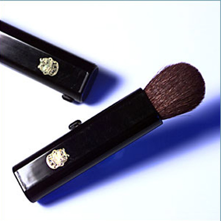 Cosmetic Retractable Brush