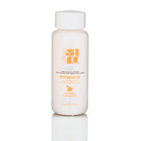 Repair Shampoo (Dry and Damaged Hair)