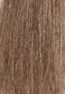 Shade No.: 8.1 Shade Name: Light Ash Blonde PLUS