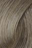 Shade No.: 10.1 Shade Name: Platinum Ash Blonde PLUS