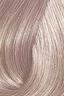 Shade No.: 9.8 Shade Name: Super Light Blonde Ash EXTRA